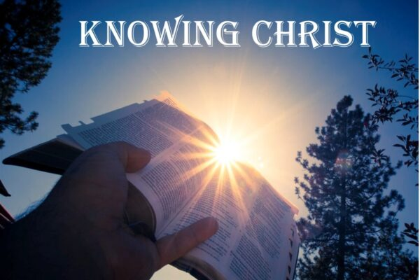 Christ in the Hebrew-Christian Epistles Image