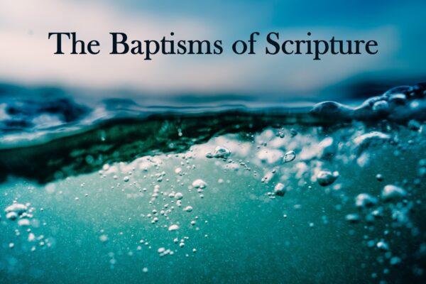 Introduction - Many Baptisms Image